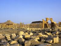 Statul Islamic a executat trei oameni. Jihadistii i-au legat de coloane antice si i-au aruncat in aer, in orasul Palmira
