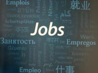 Joburi cu salarii de pana la 5000 euro/luna. Cat castiga o femeie de serviciu in Suedia si un sofer de tir in Germania
