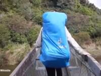 Momentul in care un pod din Noua Zeelanda se rupe in timp ce este traversat de patru turisti. VIDEO