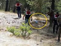 Primele imagini cu drona doborata de armata turca, dupa ce a patruns in spatiul sau aerian. \