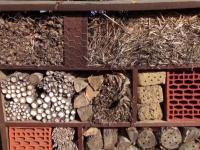 In vizita la hotelul pentru insecte, o solutie care ne scapa de pesticide. Proiectul inceput cu 74.000 de euro din fonduri UE