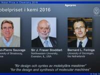 Cercetatorii Jean-Pierre Sauvage, J. Fraser Stoddard si Bernard Feriga au castigat premiul Nobel pentru chimie pe 2016