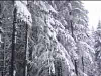 Vesti bune pentru impatimitii sporturilor de iarna. Zece tunuri cu zapada artificiala vor fi instalate in Poiana Brasov