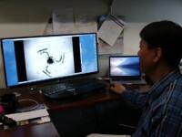 Dronele microscopice care ar putea livra medicamentele direct la organul bolnav. Cand vor ajunge in spitale