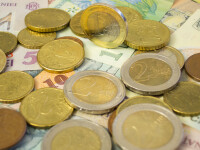 Piata de la Bucuresti este calma, in urma referendumului din Italia. Leul s-a apreciat in raport cu pricipalele valute