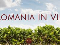 REPORTAJ MULTIMEDIA. Harta viticola a Romaniei. Cine sunt oamenii care vor sa schimbe imaginea vinului romanesc