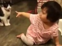 O pisica ii pune piedica unei fetite. Clipul care a facut 2 milioane de oameni sa rada. VIDEO