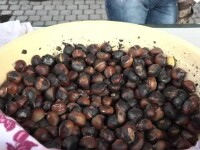 Festivalul Castanelor: boala care a nimicit fructele anul trecut a fost tratată