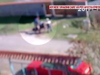 O poștăriță din Bihor a fost atacată de un câine. Momentul terifiant a fost filmat