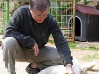 Kim Jong-un i-a dăruit lui Moon Jae-in doi câini. Ce simbolizează gestul