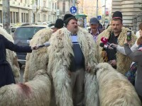 Câțiva ciobani furioși au protestat la Ministerul Agriculturii, furioși pe Petre Daea