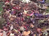 Compostul, secretul care le-a asigurat câştigul fermierilor care au pariat pe îngrăşămintele naturale