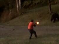 Bărbat atacat de o ursoaică, după ce a împușcat-o într-un picior. Cum s-a sfârșit totul