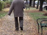 Bărbat din Târgu Mureş, ucis de un copac doborât la pământ de vântul puternic