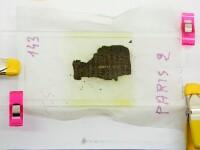 Papirusuri antice, carbonizare de erupția vulcanului Vezuviu, pe cale să fie citite din nou