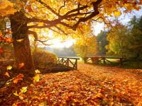 Vremea azi, 14 septembrie. Ne așteaptă zile de toamnă cu temperaturi de peste 30 de grade