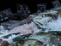 Cât de proaspăt este peștele servit în restaurante. 70% din marfă provine din import