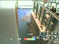 Proprietarul unui magazin a auzit cum cineva sparge vitrina. Ce creatură a intrat pe geam