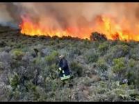 Incendiu de proporții pe Kilimanjaro. Sute de pompieri și localnici se luptă cu flăcările