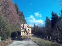 Primarul din Vlădești, Argeș, este cercetat penal. Transporta un camion cu lemne pentru care nu avea documente
