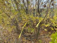 """Cadavrul carbonizat al unei femei, găsit pe un câmp din Giurgiu. """"Avea mâinile legate la spate"""""""