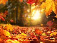 Prognoza meteo pentru luna octombrie 2021. Cum va fi vremea