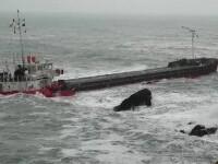 Otrava care ar putea ajunge în farfuriile noastre. Cum ne afectează pe noi scufundarea navei cu cele 3.000 de tone de uree