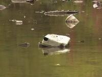 De la fotolii, până la coșuri de supermarket aruncate în lacuri. Asta poți vedea dacă îndrăznești să te plimbi prin Capitală