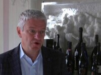 Celebrul vin Prosecco, în centrul unui scandal între viticultorii italieni, cei sloveni şi cei croaţi
