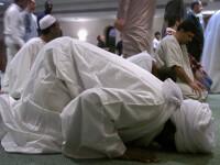 Musulmanii au liber la 100 de kilometri la ora, daca sunt poligami
