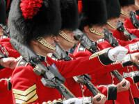 Caciulile din blana de urs ale garzilor reginei Marii Britanii vor disparea