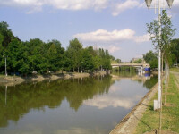 Batrana din Timis data disparuta in ianuarie, gasita moarta in raul Bega