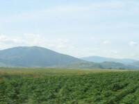 Programul Fermierul a fost extins pana la finele lui 2009