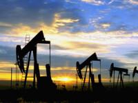 Pretul petrolului s-a prabusit cu 12%, cea mai drastica scadere in 7 ani