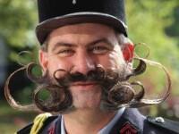 Campionatul de mustati si barbi! Vezi cum arata cei mai tari participanti!