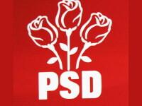 PSD va contesta Legea pensiilor la Curtea Constitutionala