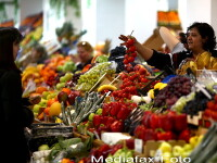 Credeati ca mancati legume 100% romanesti? 97% sunt din seminte straine