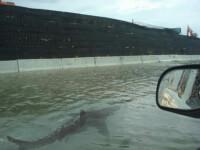 FOTO. O imagine imposibila pe care Uraganul Irene a transformat-o in realitate