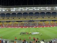 Gazonul de pe National Arena, care a costat un MILION de euro, schimbat a treia ora intr-un an