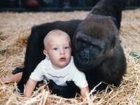 VIDEO.Ce s-a intamplat cu fetita din aceasta poza. Oamenii au fost ingroziti cand au vazut imaginile