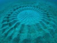 Un cerc misterios, descoperit pe fundul oceanului. Nimeni nu se astepta la aceasta explicatie