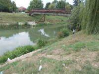 An nou, idei noi. Cinci poduri noi ar putea fi construite peste raul Bega