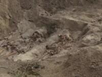 31 de morminte gasite la Periprava. IICCMER face apel la rudele detinutilor politici morti pentru identificarea lor