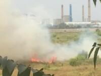Incendiul din Delta Vacaresti a fost stins aproape in totalitate. Pompierii au avut o misiune extrem de dificila. VIDEO