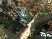 O furtuna a smuls acoperisuri si a doborat copaci, in Franta. Vantul a batut si cu 230 km pe ora: