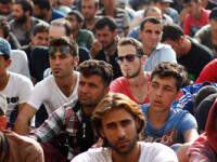 Conditiile inumane in care sunt tinuti refugiatii in tabara de la Roszke, din Ungaria: