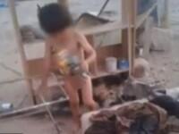 Copil de 2 ani, hranit de un caine dupa ce mama l-a abandonat. Cum l-au gasit autoritatile