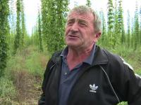 Planta cu care acest agricultor roman scoate un profit anual urias. Cum a dat lovitura cu o investitie din fonduri europene