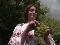 Seceta a dublat productia de struguri din Romania in acest an, iar viticultorii anunta ca vinul va fi unul de calitate