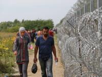 The Economist: Disputa romano-ungara pe tema gardului de la granita, motivata mai degraba de chestiuni politice interne